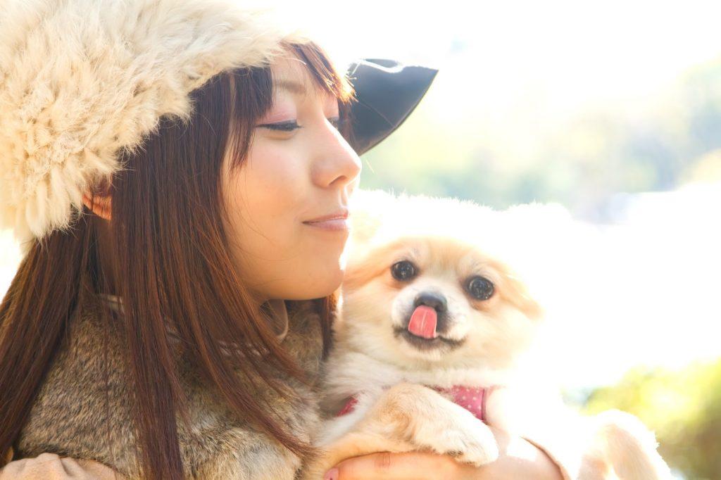 抱えられる犬